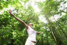 Jarní posílení a regenerace pro tělo i duši